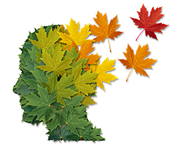 Northern Resoures represented by a picture of a head made of leaves.